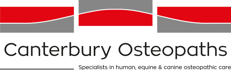 Osteopathy services in Christchurch and Canterbury